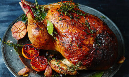 Christmas Recipes: Turkey Cooking Tips